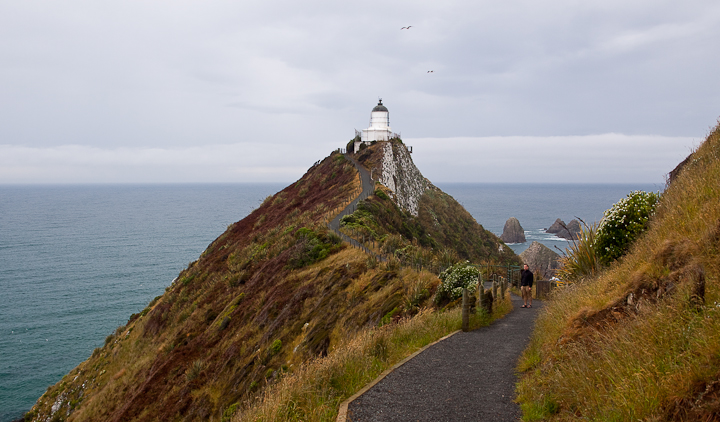 Nugget point.
